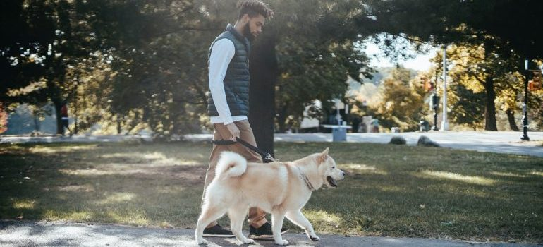A man walking his dog.
